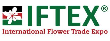 Iftex